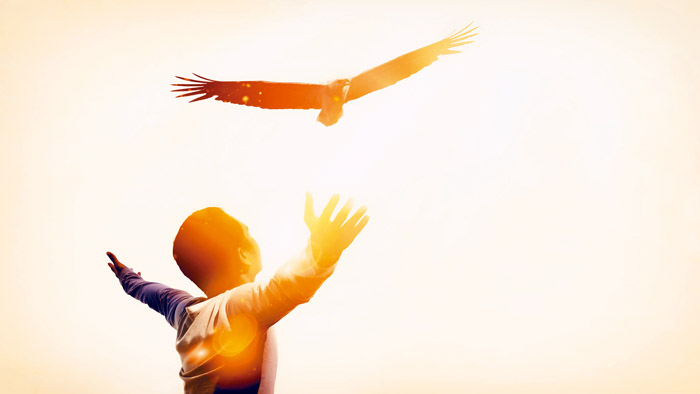 Man raise hand up on top of mountain and sunset sky with eagle b