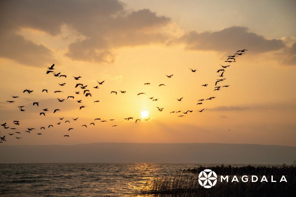 加利利海上的夕陽。(圖/FB @experiencemagdala)
