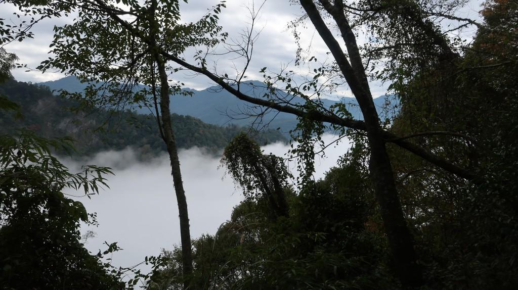 從古道遠眺雲海